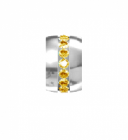 My Little Angel -  Eternity Birthstone Wheel November Yellow Topaz