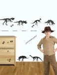 Bosco Bear - Dinosaur Bones Wall Tattoos Wall Stickers